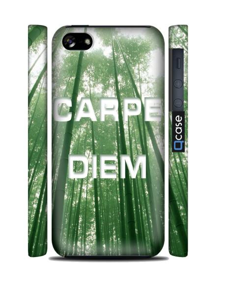 Kryt pro iPhone 5c - Carpe diem